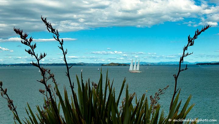 Sail ship through the flax