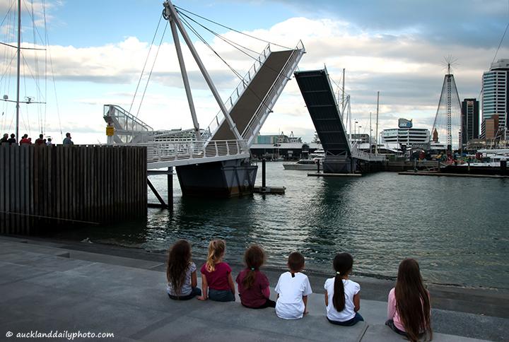 Watching the bridge - Wynyard Quarter