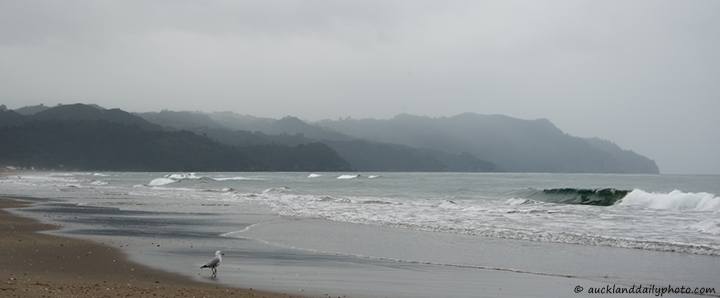 Winter sea at Waihi Beach