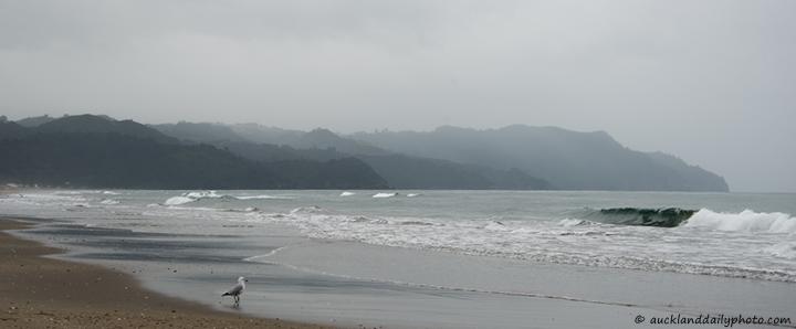 Winter sea at Waihi Beach