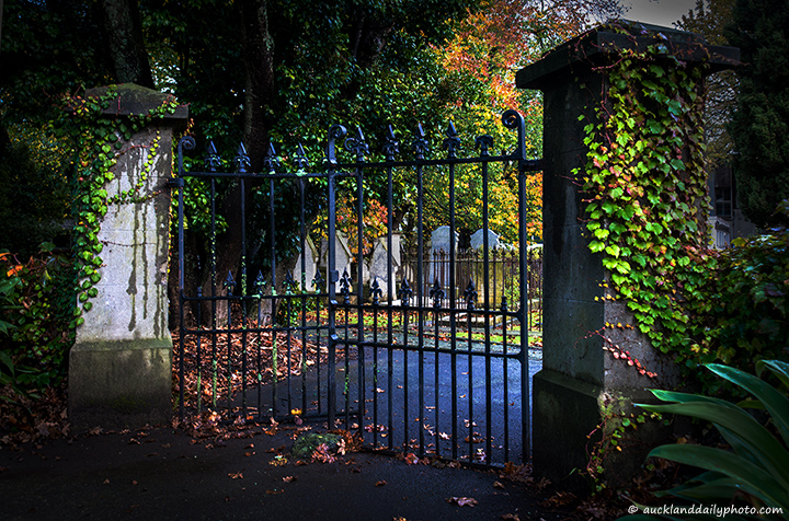 Autumn colours at the gate to the Jewish Cemetery on K Road