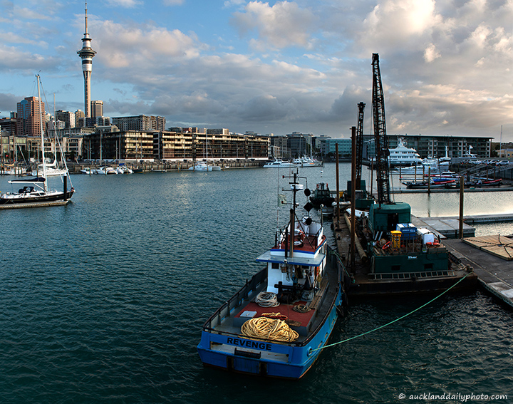 End of the day at the Viaduct Harbour
