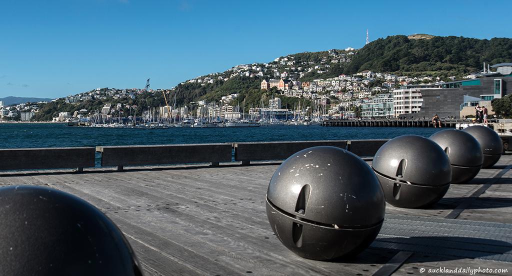 Wellington sunny steel balls