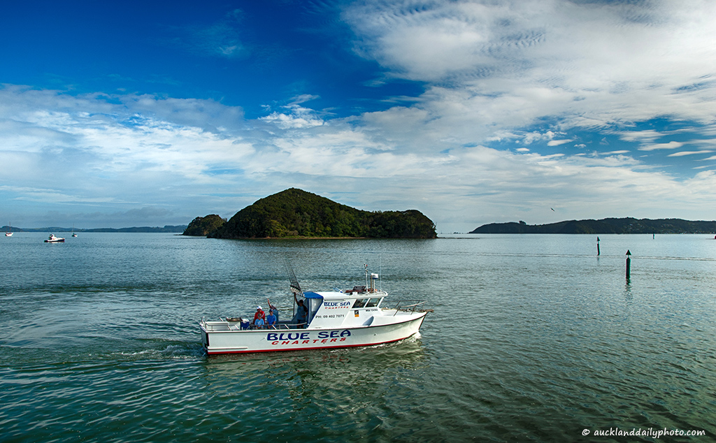 Going fishing at the Bay of Islands