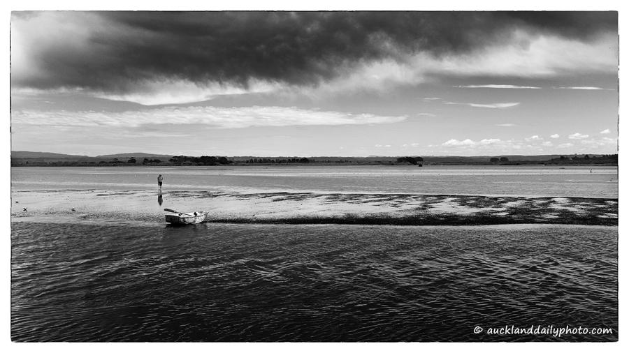 Low tide Waihi Estuary